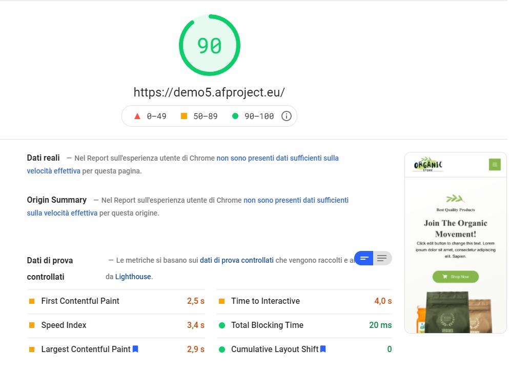Risultato finale ottimizzazione Google Page Speed